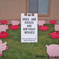 07 Hogs Kisses
